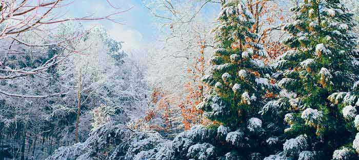 winter is a wonderful time to enjoy shopping, dining, and the wonderful sights in Frenchtown, Hunterdon County NJ